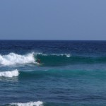 surfsandy900