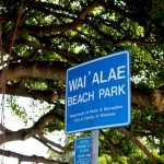 waialae2