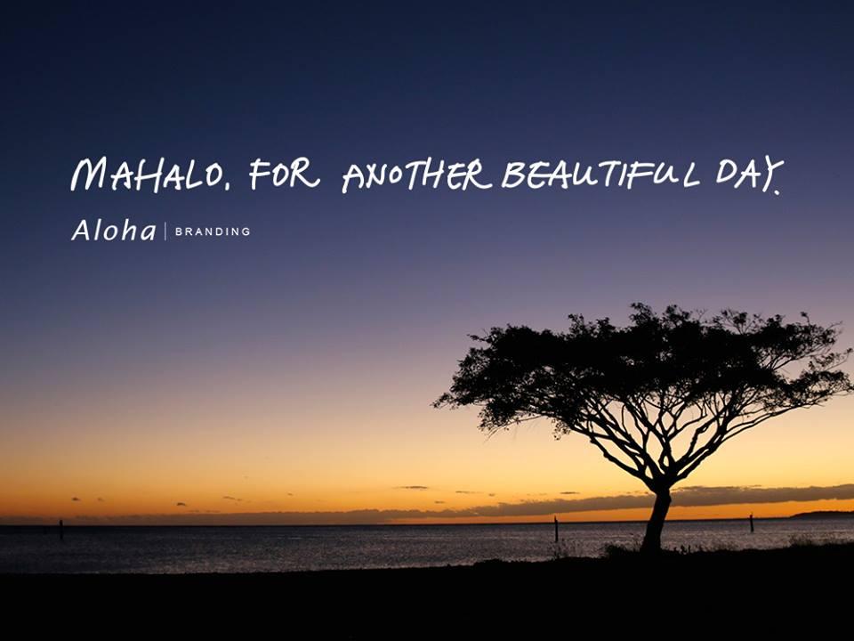 aloha branding mahalo