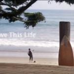 クリエイティブチェック Chobani love this life